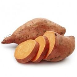 Patate douce bio origine France