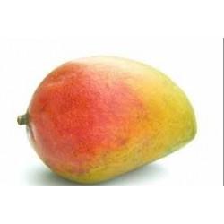 Mangue bio origine Espagne