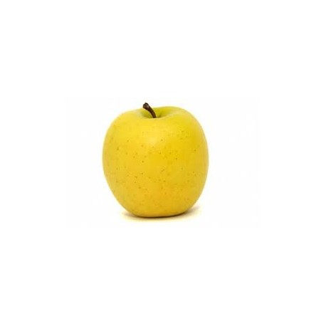 Pomme Gala bio origine France