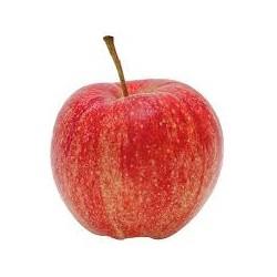Pomme Gala BIO (prix au kg)