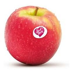 POMME PINK ROSE BIO (prix au kg)